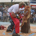 chainsaw carving competition